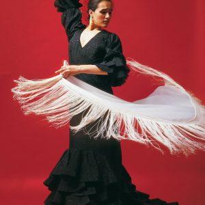 дівчина, що танцює фламенко